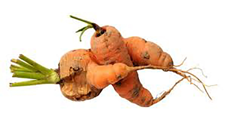 Eat Ugly Fruit and Vegetables