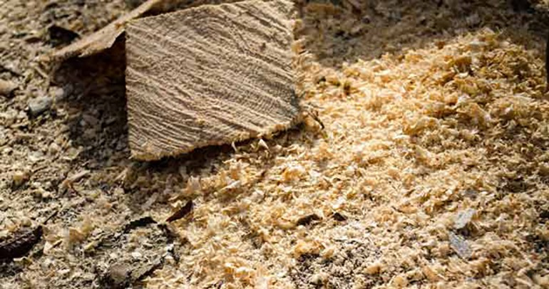 sawdust-could-be-the-next-oil-spill-solution