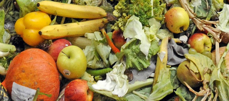 A-New-Weapon-in-Food-Waste-Conversion