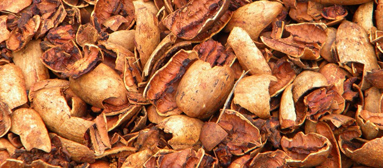 Pecan-Shells-How-They-Can-Be-Used